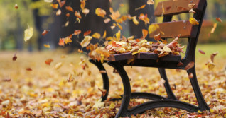 Ontario: Rain, winds linger into Thursday, Halloween storm looms