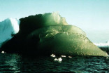 There are emerald icebergs floating in the Antarctic