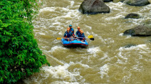 Rafters ignore warnings, plunge over waterfall
