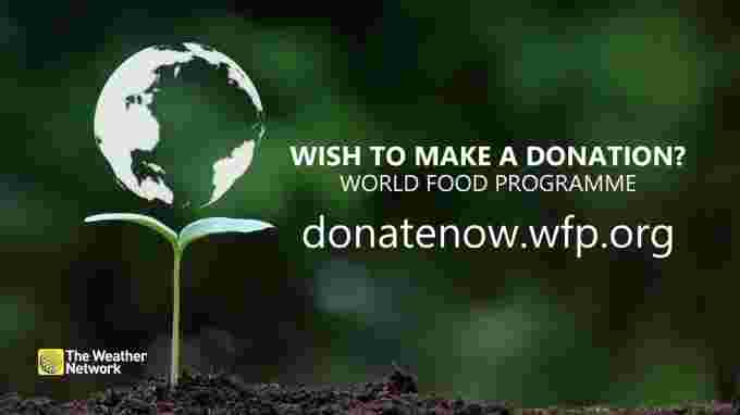 Donate to WFP