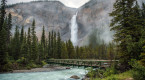 Explore Takakkaw Falls, one of Canada's highest waterfalls