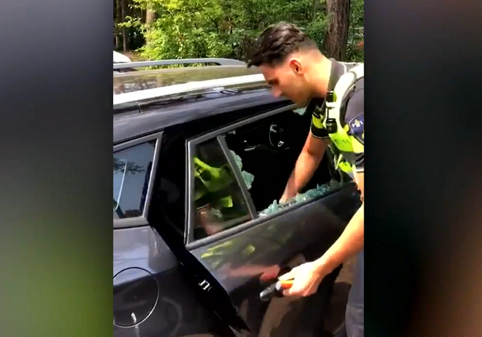 The Weather Network Dutch Police Smash Car Window To Free Trapped Dog