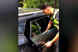 Dutch police smash car window to free trapped dog