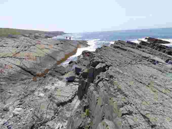 Mistaken Point kristine hibbs UGC