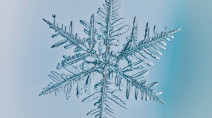 Here's why no two snowflakes are alike