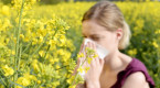Mythes au sujet des allergies