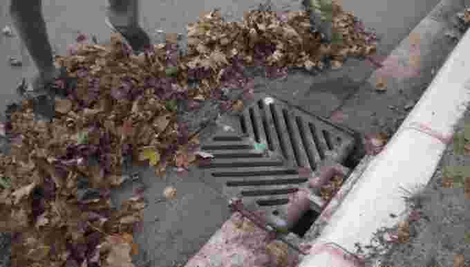 UGC: Clear gutters, leaf piles from sewers. Courtesy: David Hodge