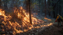 Firefighters make headway in subduing U.S. western wildfires