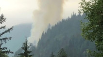 Wildfire on Sea-to-Sky highway closes northbound lanes